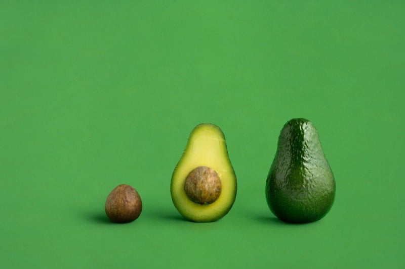 An image of an avocado pit, half the avocado, and a whole avocado as a illustration of a creative brief and creative campaign.